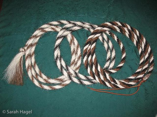 Observations On The Hair Rope Mecate
